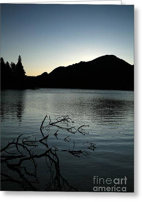 Sprague Lake Dawn Greeting Card by Timothy Johnson
