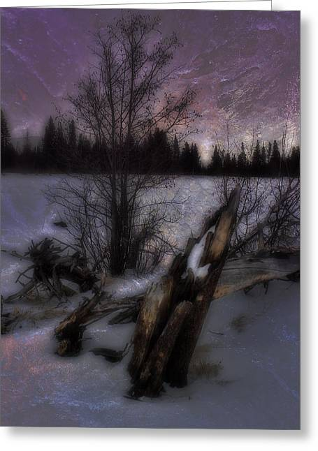 Greeting Card featuring the photograph Sprague Lake Winter Dream by Ellen Heaverlo