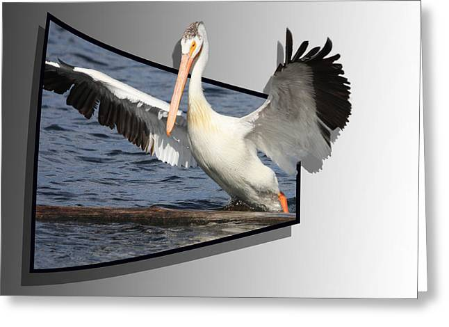 Spread Your Wings Greeting Card by Shane Bechler