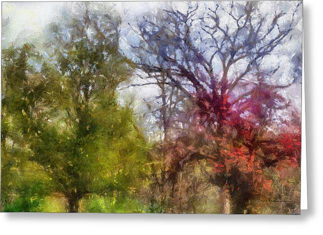 Spring 2015 Trees Pa 02 Greeting Card by Thomas Woolworth