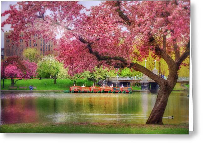 Greeting Card featuring the photograph Spring Afternoon In The Boston Public Garden - Boston Swan Boats by Joann Vitali