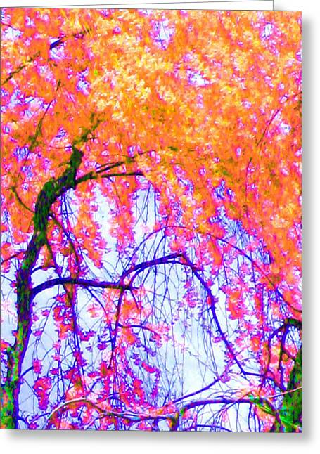 Greeting Card featuring the photograph Spring Alive by Susan Carella