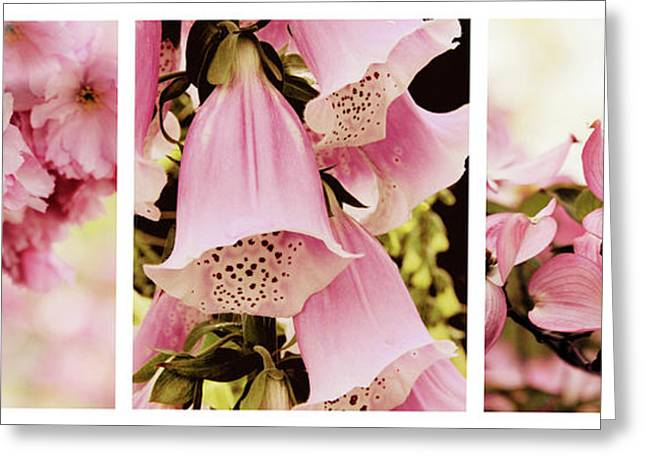 Spring Assemblage Triptych Greeting Card