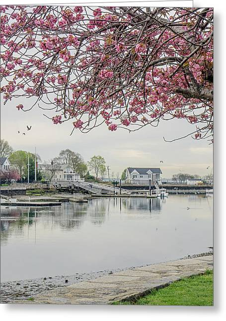 Spring At The Harbor Greeting Card by June Marie Sobrito