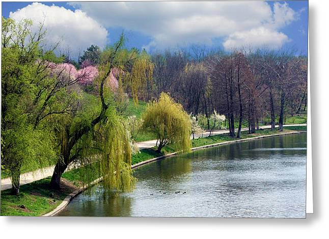 Spring At The Lake Greeting Card