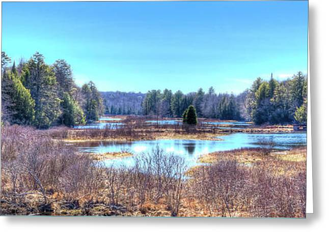 Greeting Card featuring the photograph Spring Scene At The Tobie Trail Bridge by David Patterson