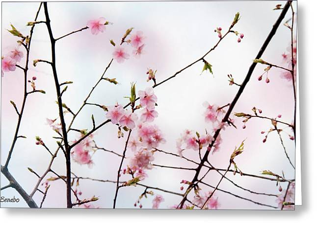 Spring Awakening Greeting Card by Eena Bo