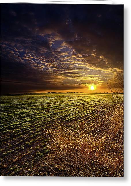 Twilight Greeting Cards - Spring Awakening Greeting Card by Phil Koch