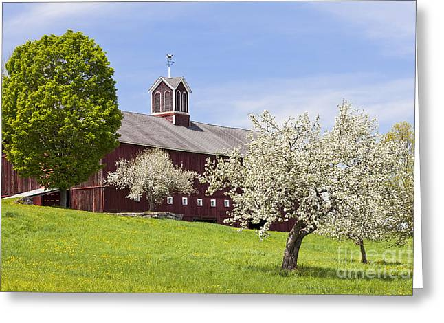 Spring Barn Greeting Card by Alan L Graham