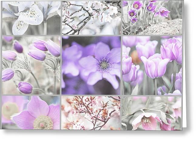 Greeting Card featuring the photograph Spring Bloom Collage. Shabby Chic Collection by Jenny Rainbow