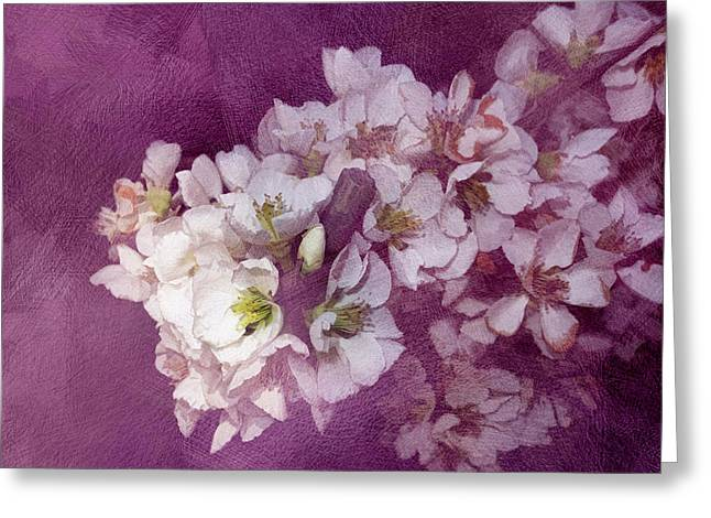Spring Blooms Greeting Card by Ann Powell