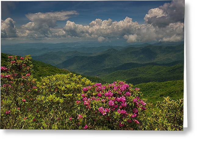 Spring Blooms On The Blue Ridge Parkway Greeting Card