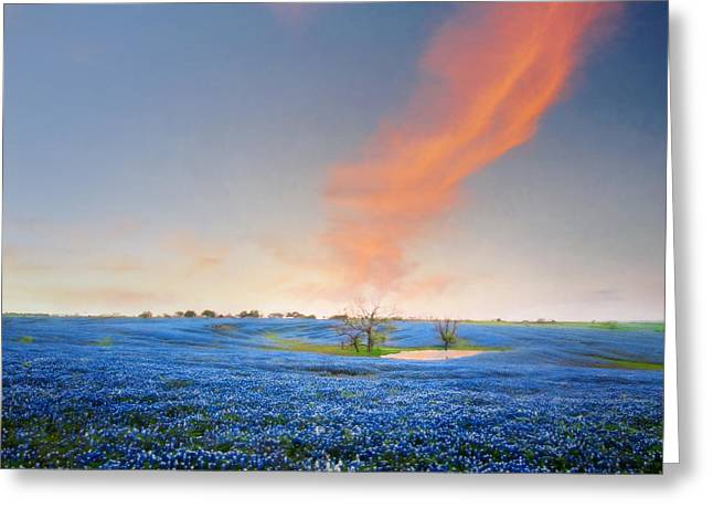Spring Bluebonnets In Texas Greeting Card by David and Carol Kelly