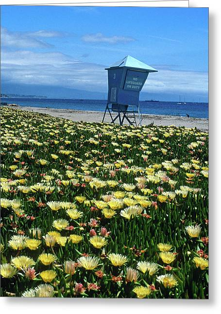 Landscape Framed Prints Greeting Cards - Spring Break Santa Barbara Greeting Card by Kathy Yates