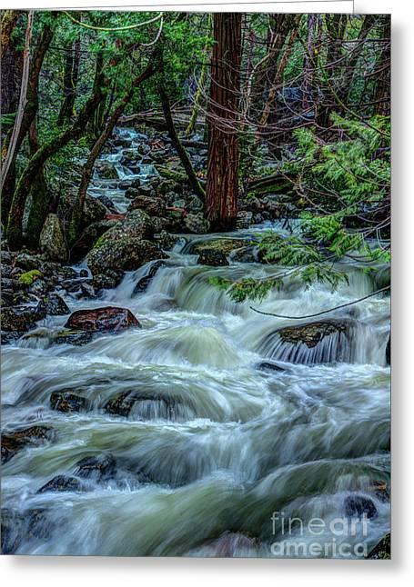 Spring Bridalveil Creek In Yosemite Greeting Card by Terry Garvin