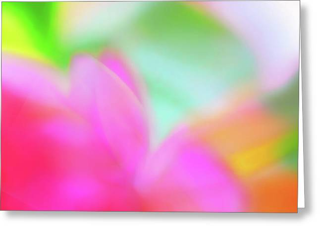 Spring Brights Greeting Card