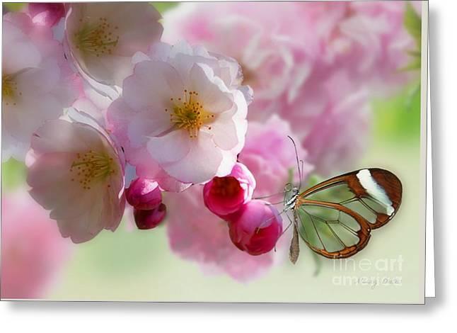 Spring Cherry Blossom Greeting Card