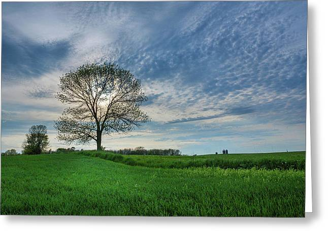 Greeting Card featuring the photograph Spring Coming On by Bill Pevlor