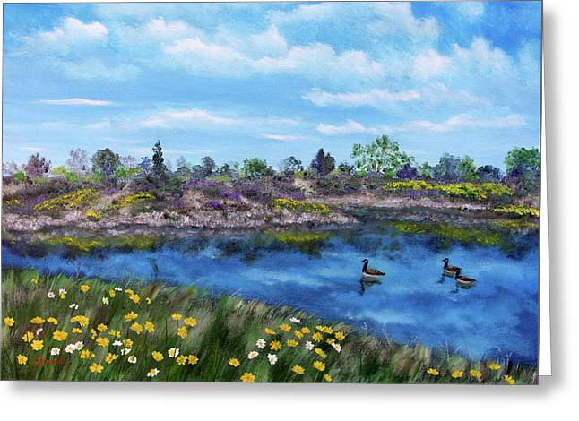 Spring Daisies At Los Gatos Lake Greeting Card