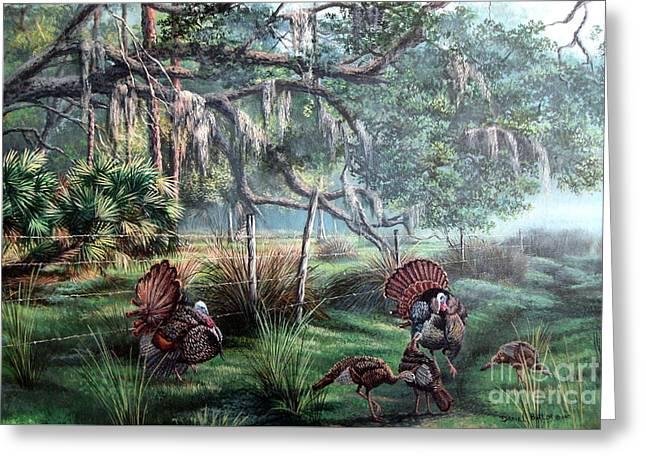 Spring Dance-osceola Turkeys Greeting Card by Daniel Butler