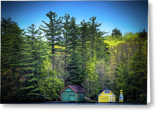 Spring Day At Old Forge Pond Greeting Card by David Patterson