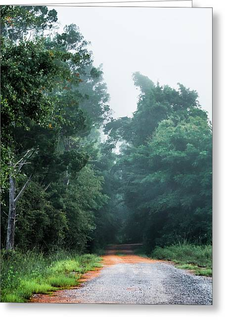 Greeting Card featuring the photograph Spring Dirt Road by Shelby Young