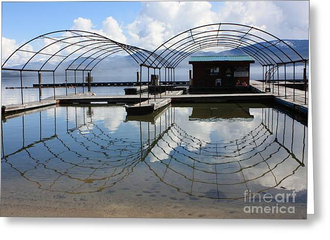 Spring Docks On Priest Lake Greeting Card by Carol Groenen