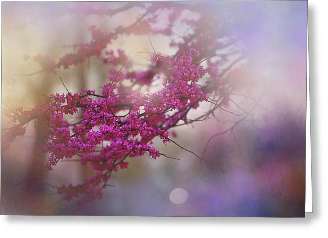 Greeting Card featuring the photograph Spring Dream I by Toni Hopper