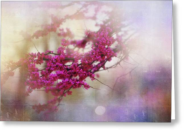Greeting Card featuring the photograph Spring Dreams II by Toni Hopper
