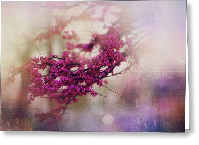 Spring Dreams IIi Greeting Card by Toni Hopper
