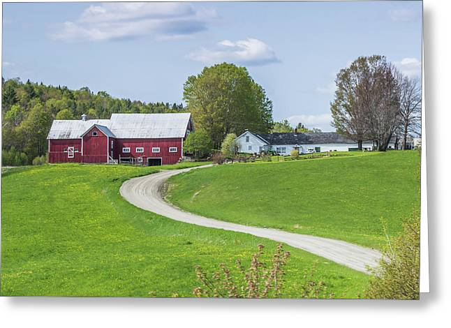 Spring Farm Greeting Card