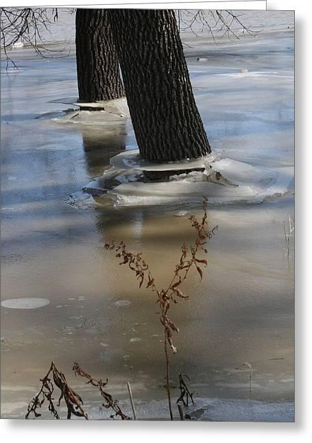 Spring Flood Greeting Card