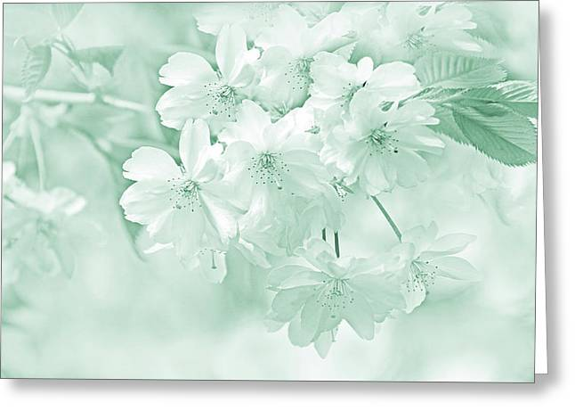 Greeting Card featuring the photograph Spring Flower Blossoms Teal by Jennie Marie Schell