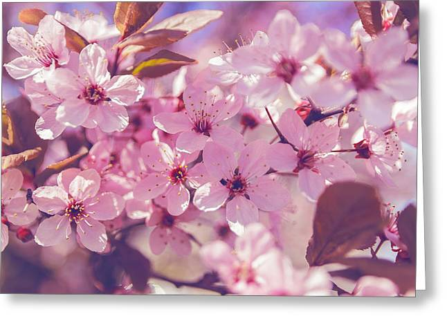 Spring Flowers Greeting Card by Thubakabra