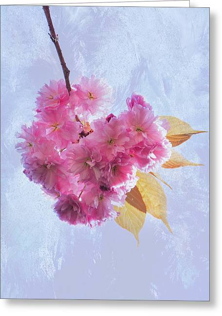And Spring Arrives Greeting Card