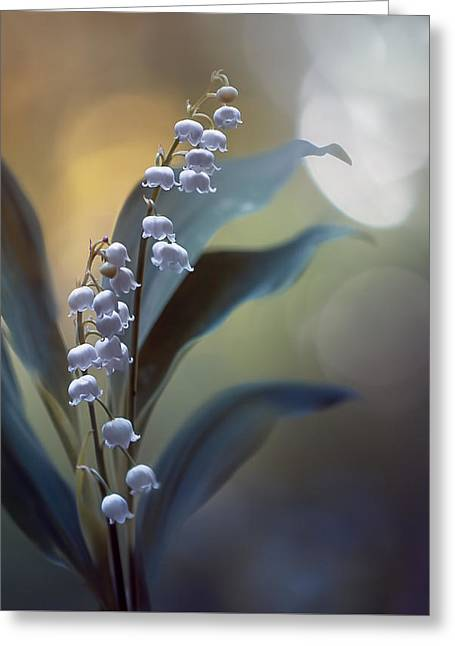 White Pearls Greeting Card by Magda  Bognar