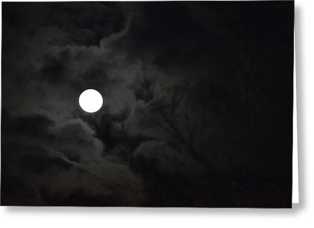 Spring Full Moon Greeting Card by Jimi Bush
