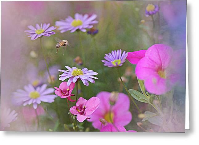 Spring Garden 2017 Greeting Card by Jeff Burgess