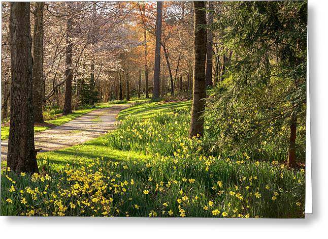 Spring Garden Path Greeting Card