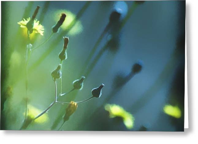 Greeting Card featuring the photograph Spring Grass by Yulia Kazansky