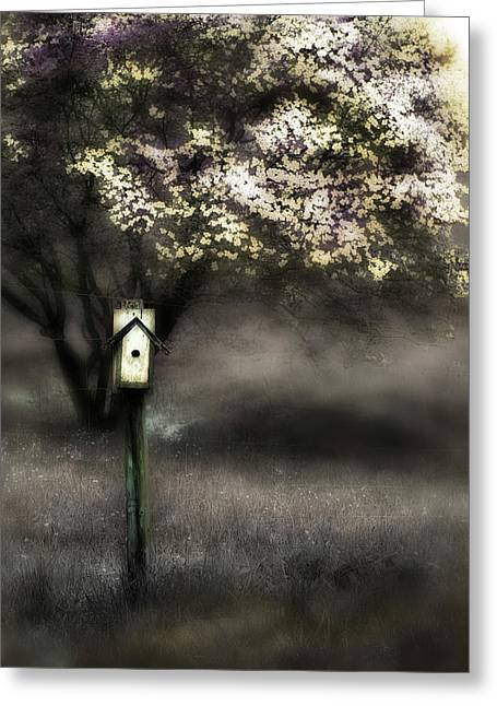 Spring  Greeting Card by Gray  Artus