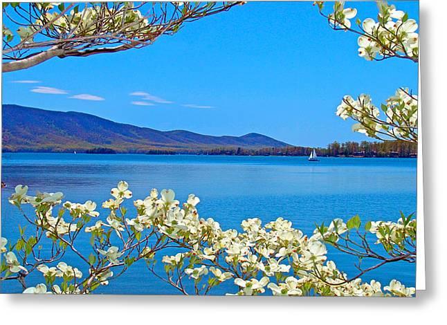 Spring Has Sprung 2 Smith Mountain Lake Greeting Card