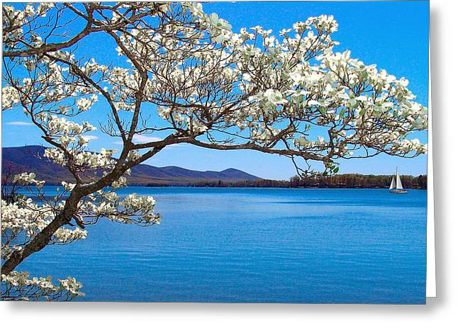 Spring Has Sprung Smith Mountain Lake Greeting Card by The American Shutterbug Society