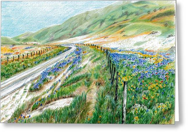 Mountain Road Drawings Greeting Cards - Spring has Sprung Greeting Card by Jeanette Schumacher