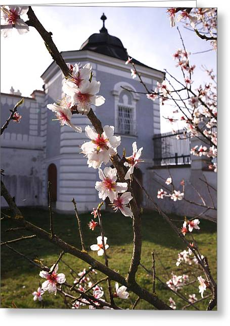 Spring In Herzogenburg, Lower Austria Greeting Card