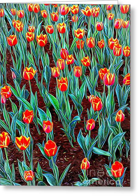 Spring In Holland Greeting Card