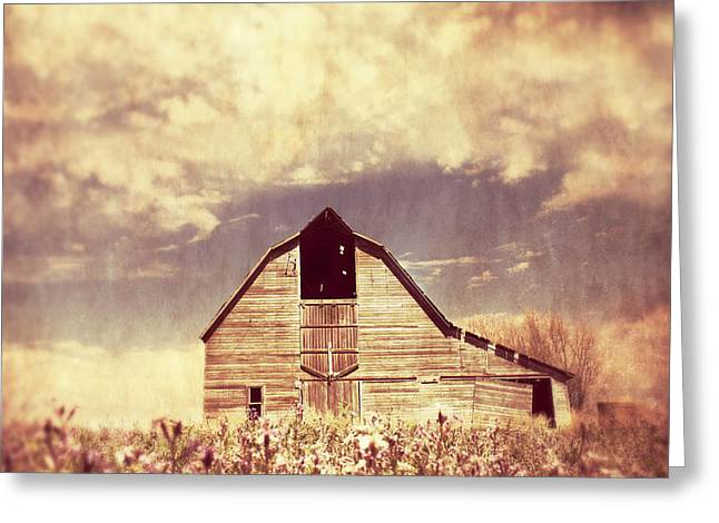 Spring In Kansas  Greeting Card by Julie Hamilton