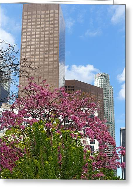 Spring In L A Greeting Card