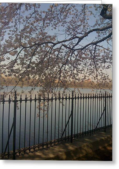 Spring In New York City Greeting Card by Wendy Uvino