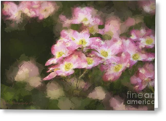 Spring In Pink Greeting Card by Linda Blair